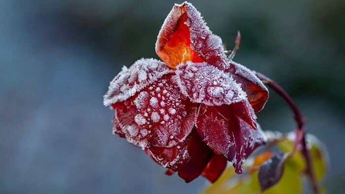 Синоптик обещает резкое похолодание - Погода в Украине на 3 дня