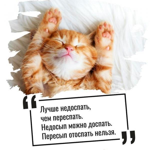 день сна картинки