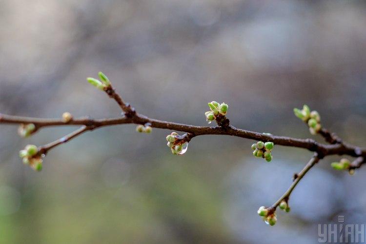 погода,Киев,весна