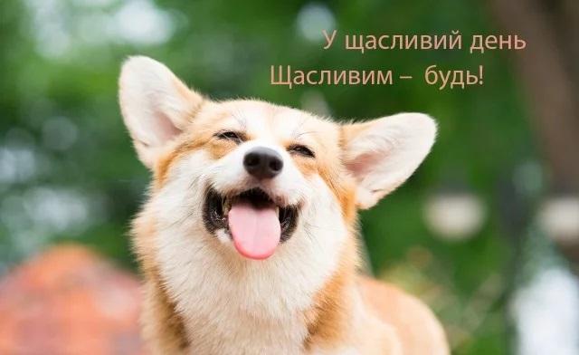відкритки з днем щастя
