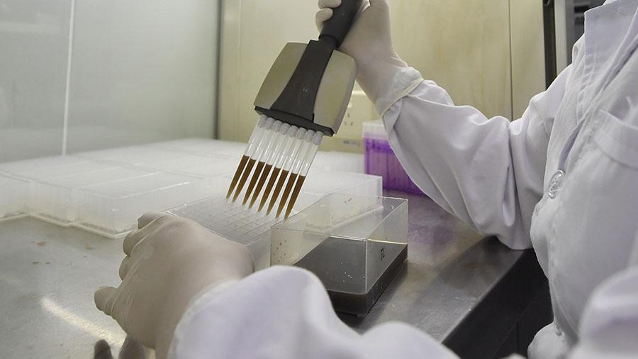 Ученые, коронавирус