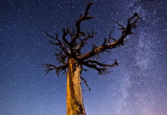 Астрологи сообщили, что в новолуние в ноябре 2020 года противопоказаны ряд дел