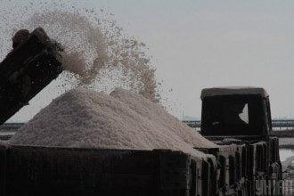 Експерт повідомив, що українці їдять надто багато солі – Сіль шкідлива