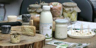 Диетологи выяснили, что на завтрак стоит есть молочку – Чем можно и нельзя завтракать