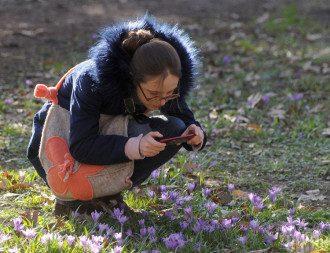 Синоптик спрогнозировала, что в Киеве в четверг подпрыгнет температура – Прогноз погоды Киев