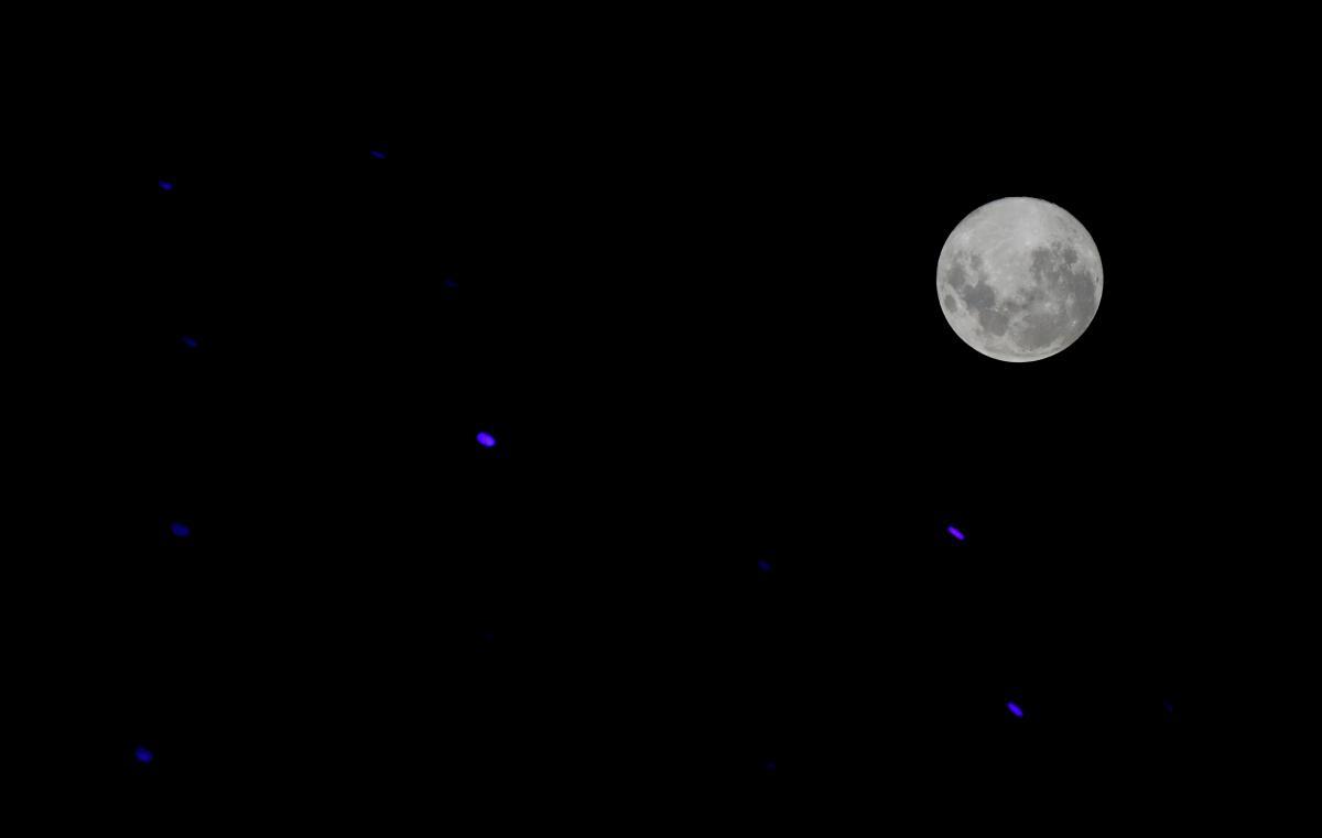 Рожевий Місяць 2020 у Буенос-Айресі