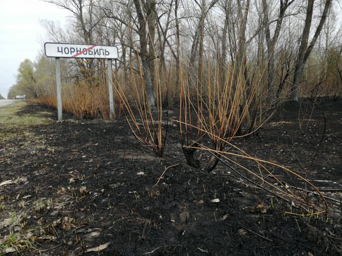 пожар, чернобыль