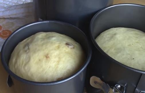 Паски заварные можно выпекать, когда в формах они подрастут приблизительно в два раза – Заварной кулич – идеальный рецепт