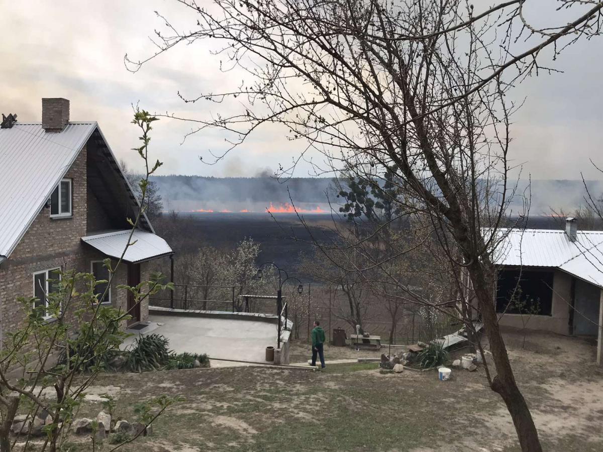 В Киевской области жуткий пожар накрыл дачный поселок - фото