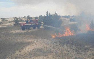 В зоне ЧАЭС бушует лесной пожар / фото ГСЧС