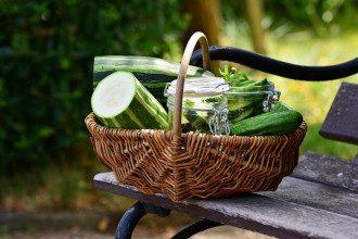 Огірки несуть шкоду - чому не можна їсти огірки у великих кількостях
