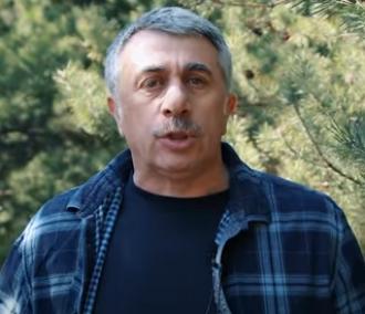 Евгений Комаровский полагает, что таракан, теоретически, может принести коронавирус – Коронавирус в Украине