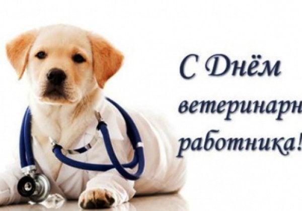 den-veterinarnogo-rabotnika-otkritki-s-pozdravleniyami foto 6