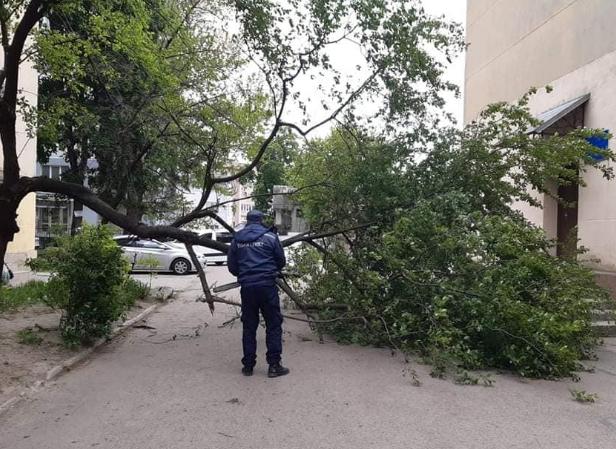 На Прикарпатті вирувала стихія – Пилова буря сьогодні