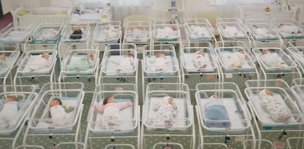 51 младенец ожидает выезда за границу