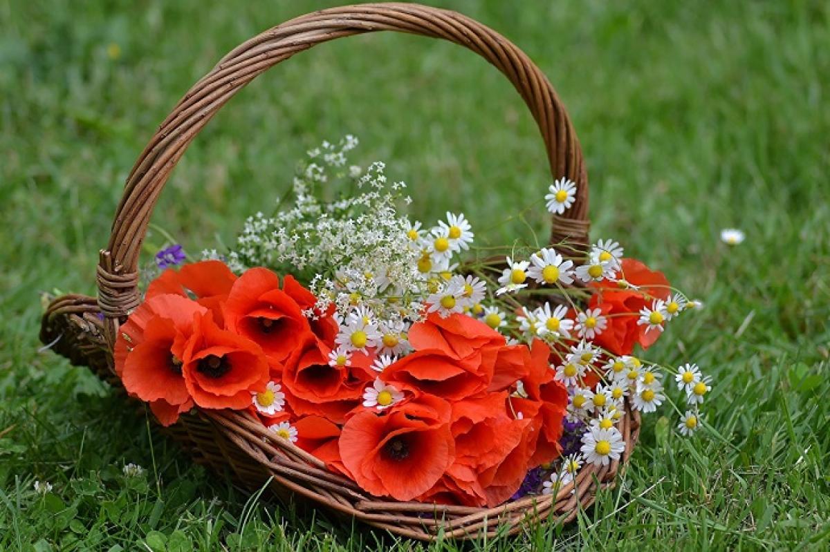 17 июня праздник - День Митрофана - что нельзя делать, приметы