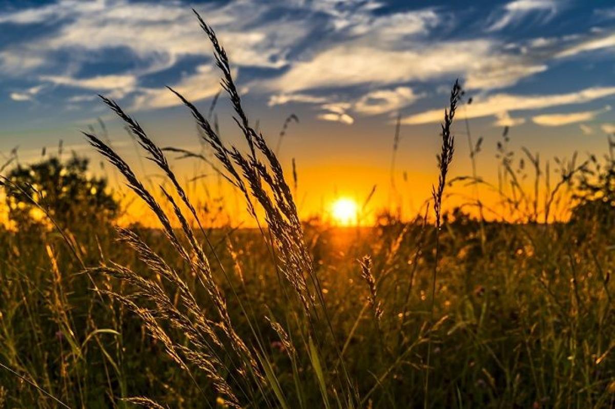 День літнього сонцестояння - що не можна робити і які ритуали потрібні