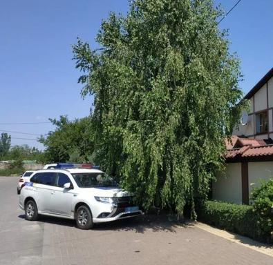 У Миколаєві загинула дружина депутата Ігоря Івануни, з'ясували журналісти – Новини Миколаєва