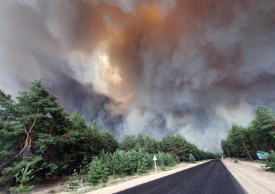 Луганщина,пожежа