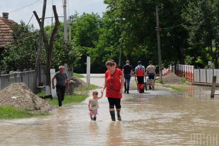 Метеоролог сообщила, что климатические зоны в Украине смещаются на север – Изменения климата в Украине