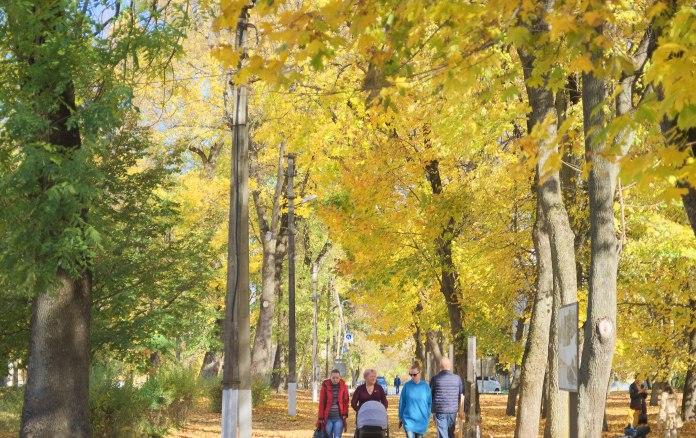 осень,Украина