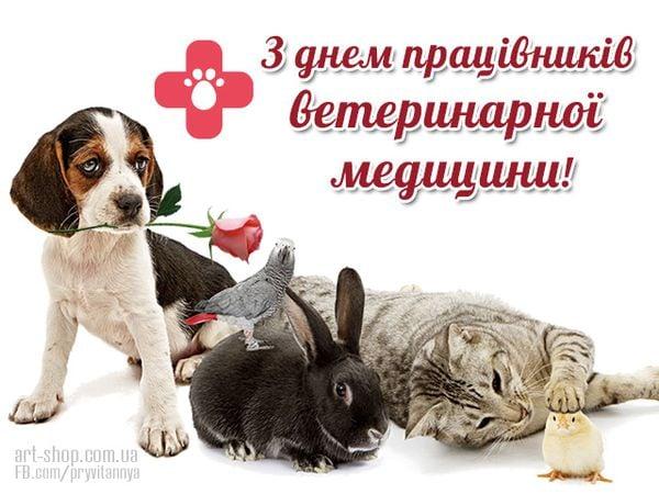 привітання з днем ветеринара картинки листівки прикольні