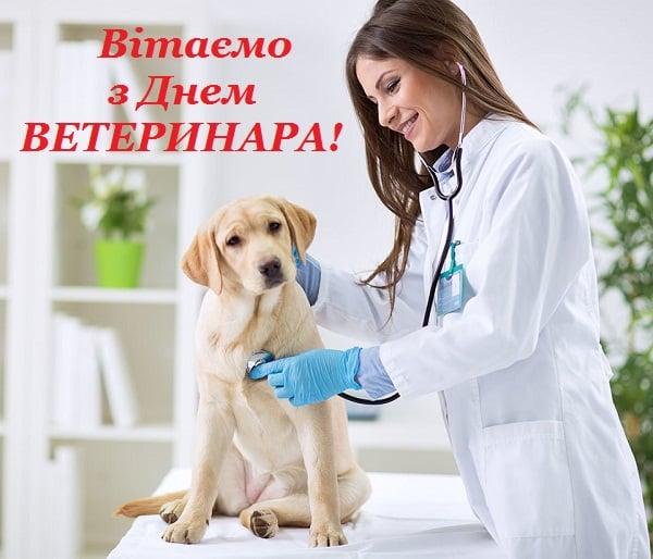 привітання з днем ветеринарного працівника картинки