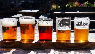 Как выбрать качественное свежее пиво