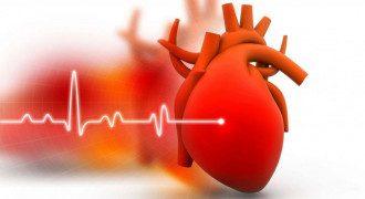 Раптова зупинка серця-це коли серце починає працювати неправильно і раптово перестає битися./ eluniverso.com