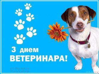 День ветеринара - листівки і привітання прикольні і смішні