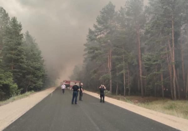 Журналисты узнали, что на Луганщине могли устроить пожары, чтобы скрыть проблему – Луганская область пожар