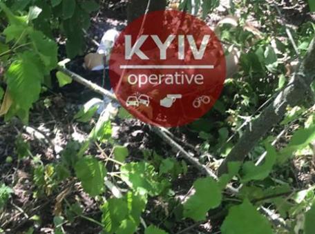 У Київській області знайдено мертвою дівчинку Софію, правоохоронці вважають, що її вбив підліток – Новини Яготин