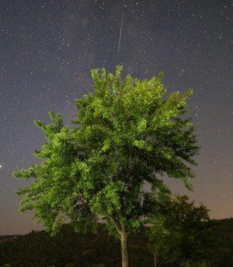 Поддержка высших сил светит одному знаку Зодиака – Гороскоп на сегодня 15 августа 2020 года