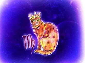 Астролог поділився, що Діви – суперові підлеглі – Гороскоп Діва