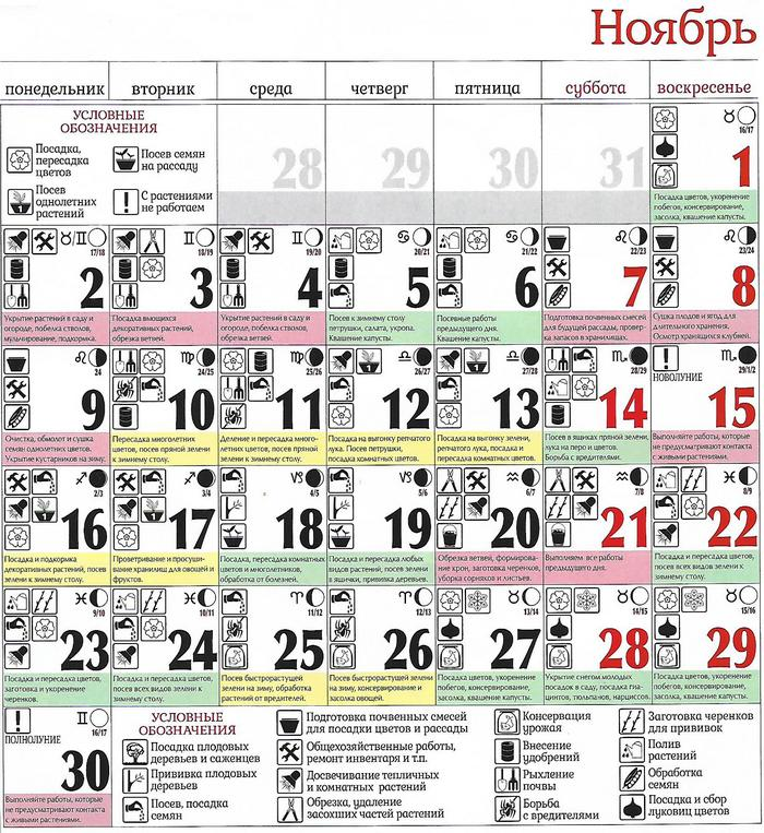 Місячний посівний календар на листопад 2020 таблиця