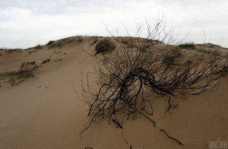 Балабух спрогнозувала, що Україну не поглинуть Олешківські піски – Україна пустеля