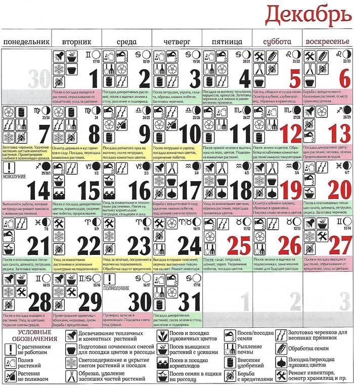 Лунный календарь садовода и огородника на декабрь 2020 по дням