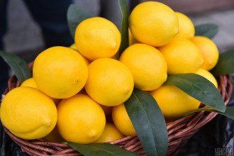 Експерт повідомила, якій інформації щодо лимона не варто вірити – Лимон вітаміни
