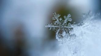 Будет ли в Украине снег на Новый год / pixabay