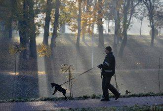 Стало відомо, коли в Україні очікуються морозні та теплі дні – Морози 2020