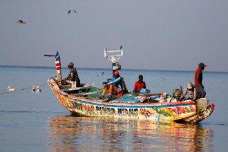 У Сенегалі понад 100 рибалок підхопили невідому хворобу – Новини Африки
