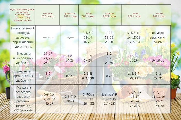 Місячний посівний календар на 2021 рік: таблиця на перше півріччя