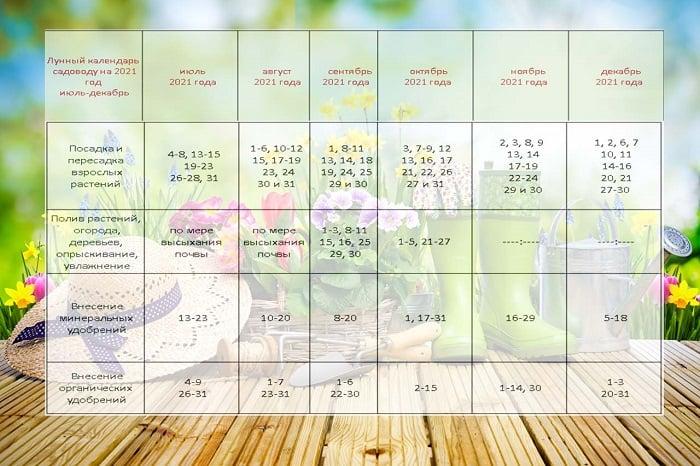 Лунный посевной календарь на 2021 год: таблица на второе полугодие