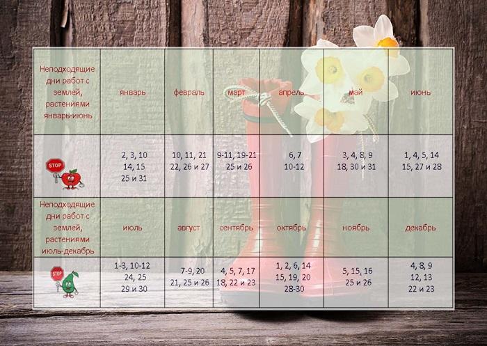 Лунный посевной календарь на 2021 год: все неблагоприятные дни