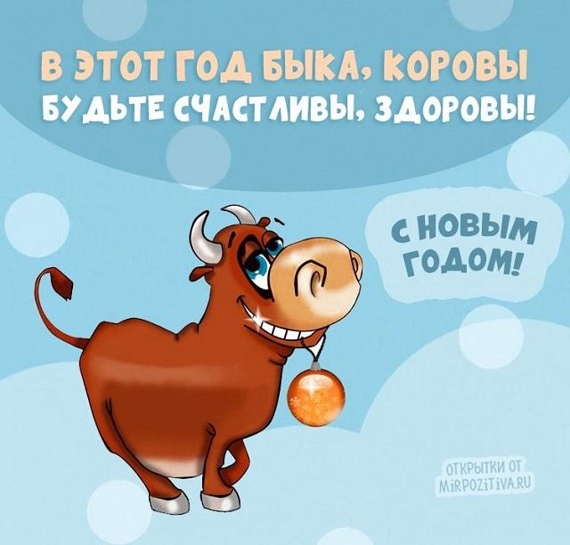 прикольные новогодние открытки 2021 год быка