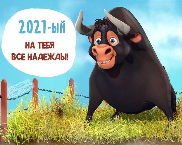 Год Быка 2021 открытки прикольные