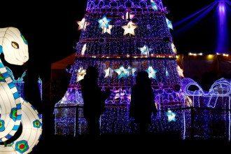 Тельцям та Ракам спрогнозовано діловий бум – Гороскоп на сьогодні 8 грудня 2020 року для всіх