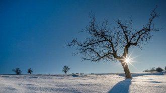 Магнитная буря с 23 декабря затронет и Рождество 2020 - как пережить