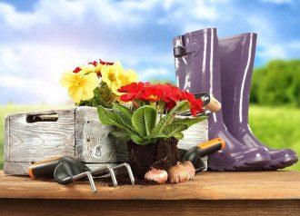 Посевной календарь на 2021 год городника и садовода - таблица и советы