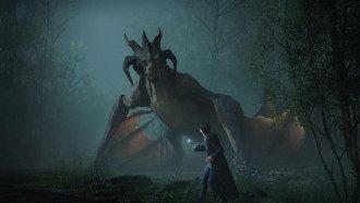 Кадр из Hogwarts Legacy / Avalanche Software